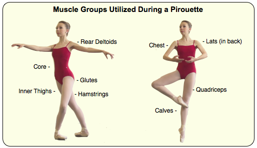 pirouette muscle groups